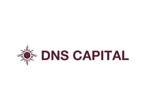 BIGfish PR client - DNS Captial