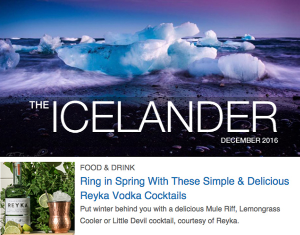 icelandnaturally-email-marketing-1