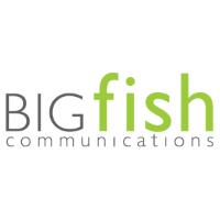 Current BIGfish Logo