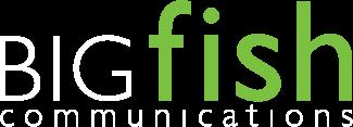 BIGfish Tech PR Agency logo